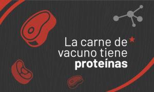 La carne de vacuno tiene proteínas